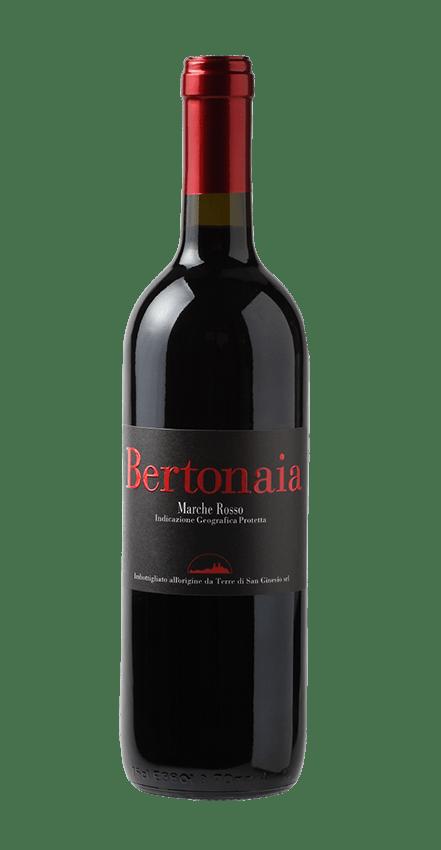 bottiglia vino bertonaia